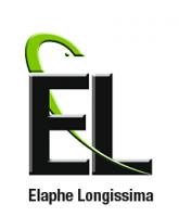 Elaphe Longissima